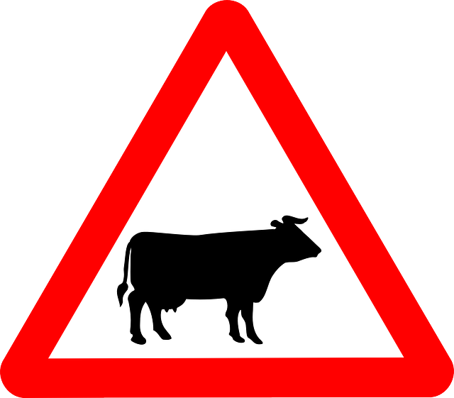 free vector graphic cattle crossing  signs  cattle free road signs clip art free road signs clip art free