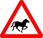 horse, information, transport