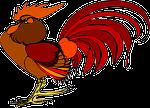 rooster, chicken, bird