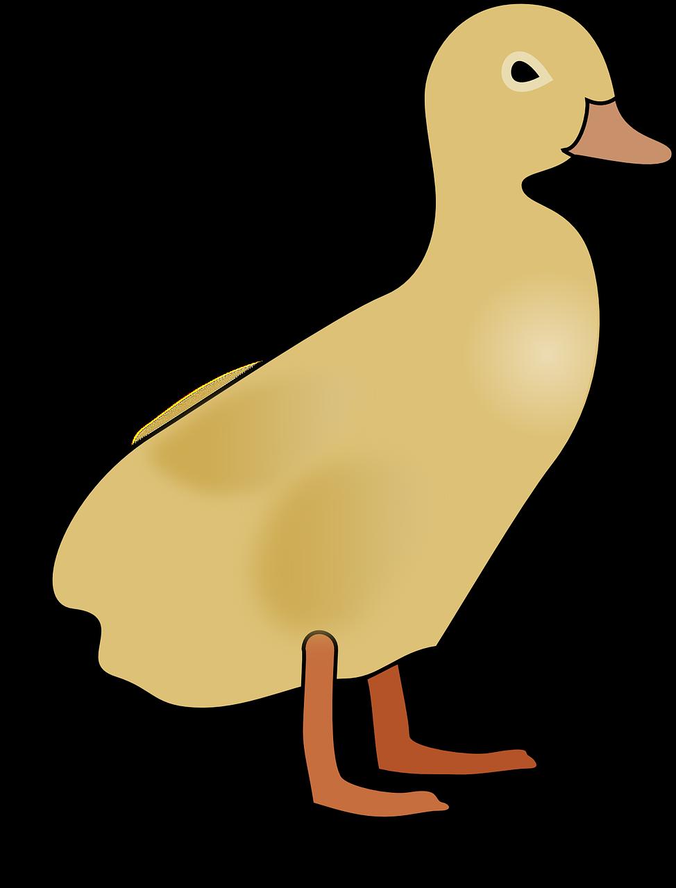 Рисунок уток для детей