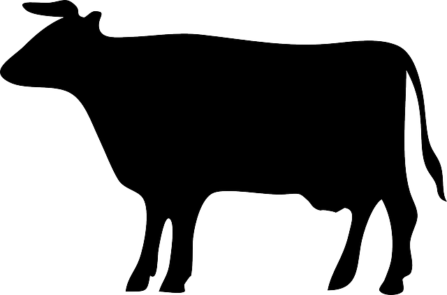 Cow silhouette png - photo#20