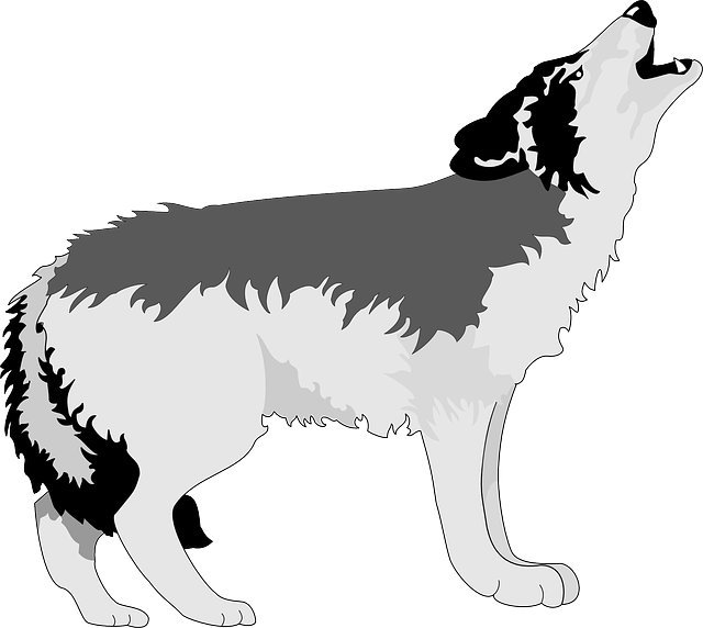 Wolf Howling Moon · Free vector graphic on Pixabay