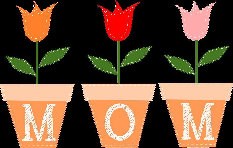 tulpen blumen t pfe kostenlose vektorgrafik auf pixabay. Black Bedroom Furniture Sets. Home Design Ideas