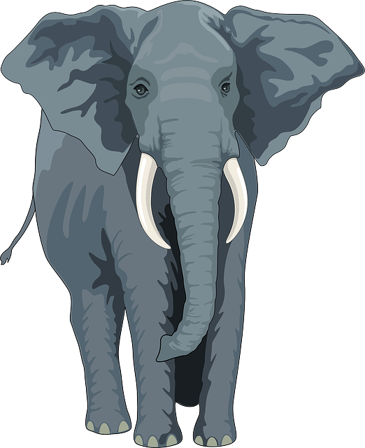 Free Vector Graphic: Elephant, Animal, Trunk, Tusks