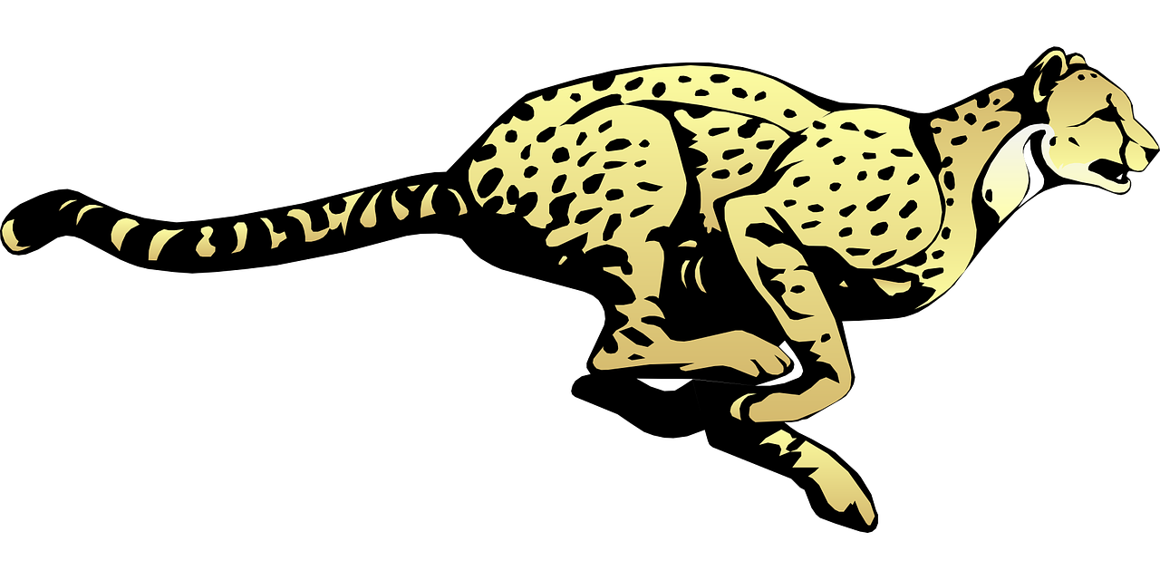 the evolution of cheetahs Cheetah evolution bill thomas cheetah home / garage on the origin of the species because of the size and configuration of the cheetah evolution.