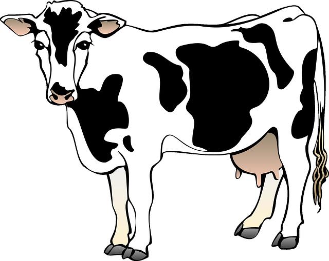 всех брендов коровы в разных ракурсах подробнее инструкцию применению