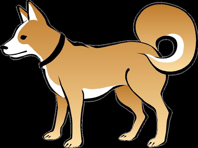 77 Koleksi Gambar Hewan Anjing Kartun HD Terbaik