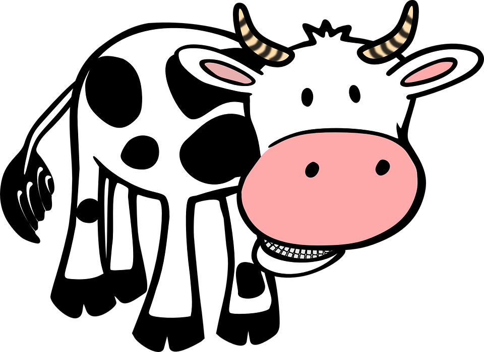 Kuh, Lebensmittel, Bauernhof, Tier, Hörner, Rindfleisch