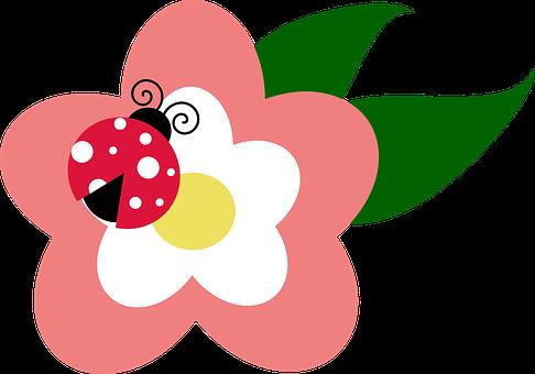 Leaf, March, Flower, Spring, Ladybug