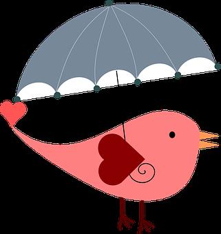 傘, 鳥, 天気予報, 雨, かわいい, カバー