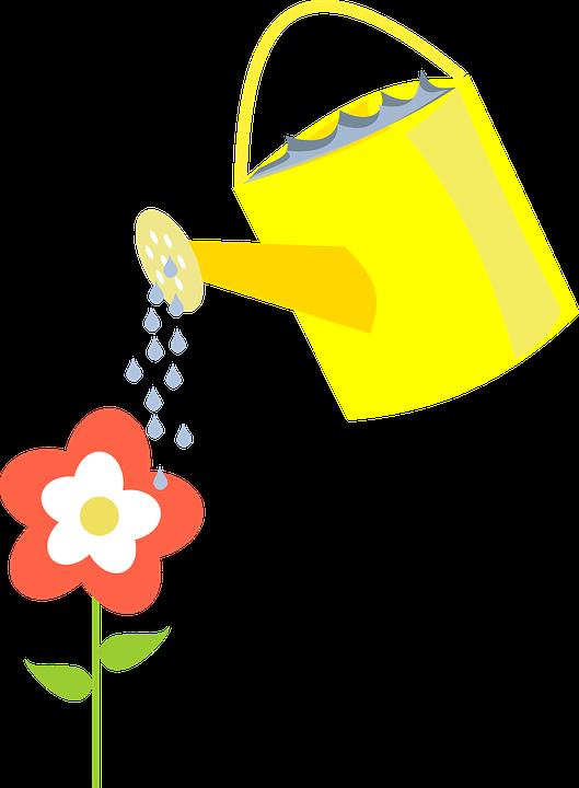 Ibrigi Sulama Cicek Pixabay Da Ucretsiz Vektor Grafik