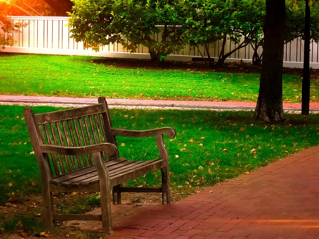 free photo bench wooden park bench park free image