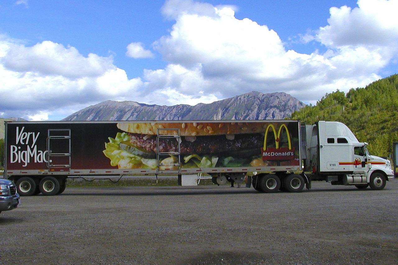 что нужно водителю для перевозки грузов