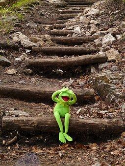 カーミット, カエル, 座る, 階段, 徐々に, ブラインド
