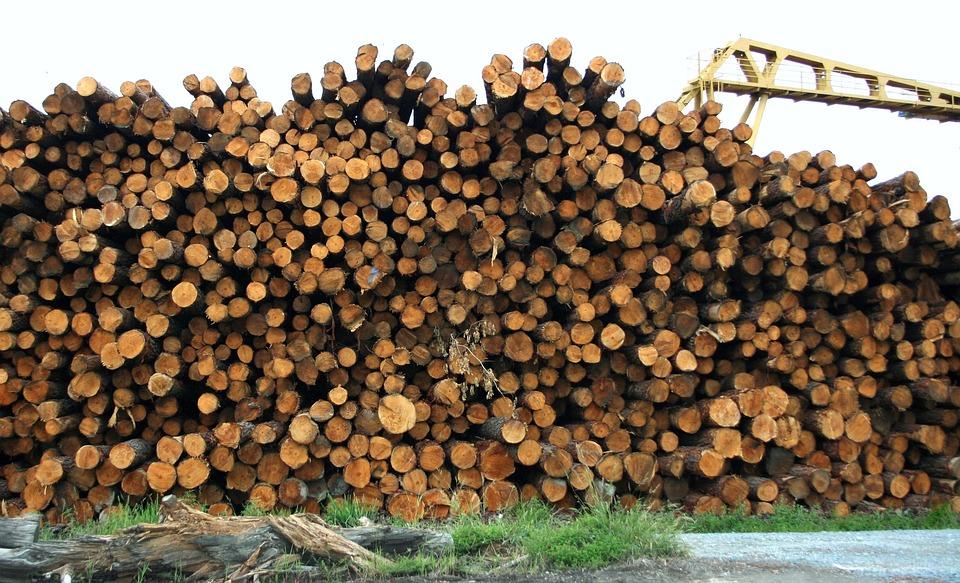 Lumber, Logs, Wood, Timber, Pile, Material, Industry