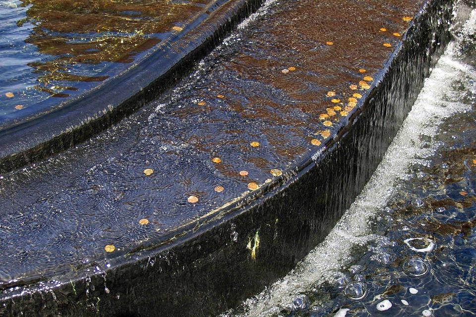 Brunnen Wasser Münzen Kostenloses Foto Auf Pixabay