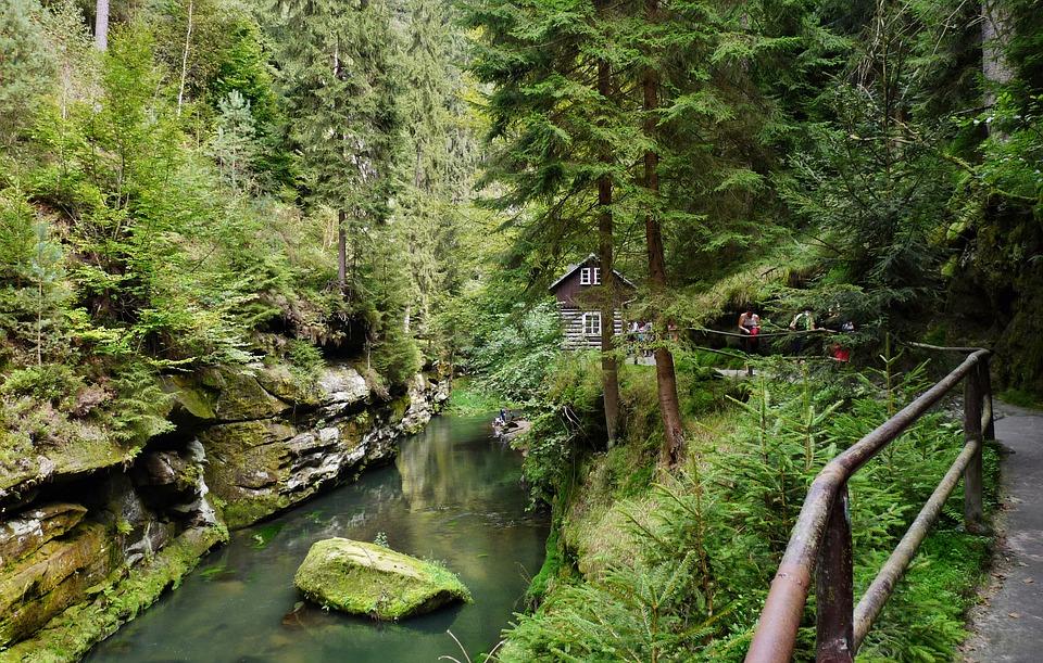 Natur, Fluss, Bach, Tschechien