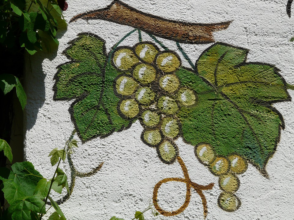 Duvar Resmi Boyama üzüm Pixabayde ücretsiz Fotoğraf