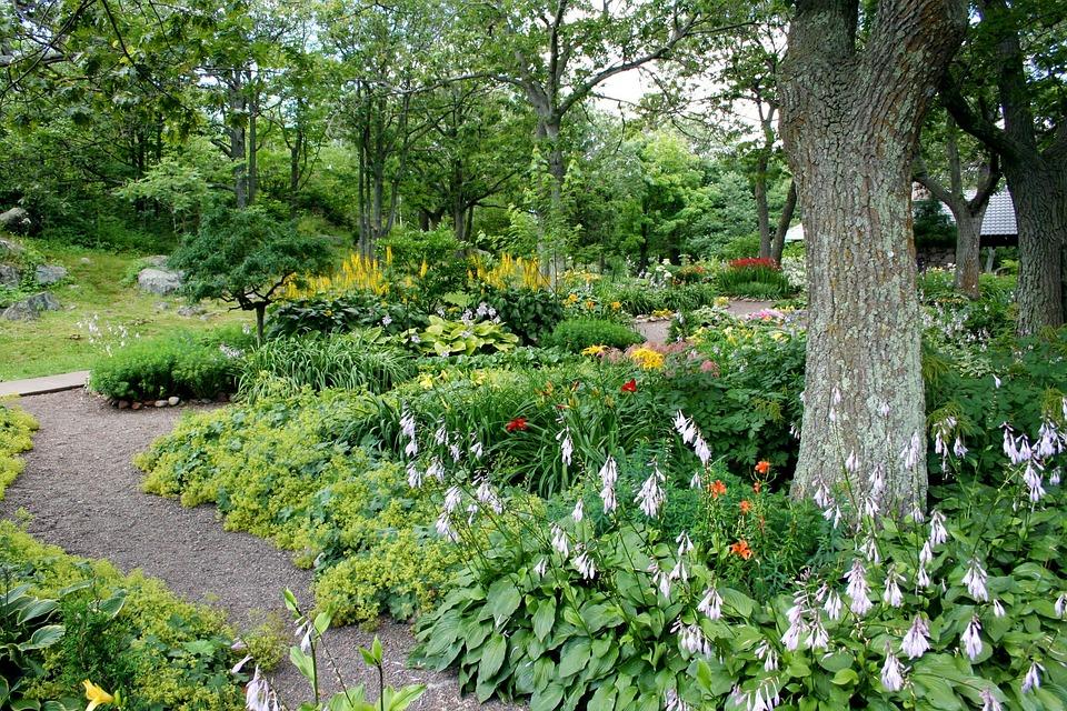 garden path flowers trees natural summer walkway - Flower Garden Path