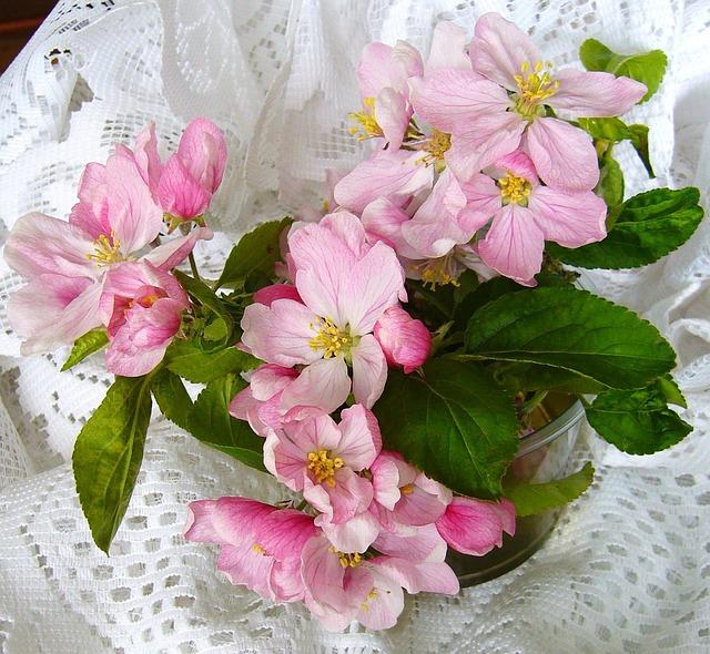 Apple Blossom Flower Arrangement 183 Free Photo On Pixabay