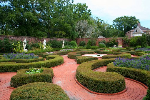 Knot Garden, Formal Garden, Flowers