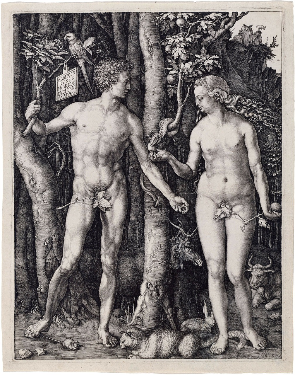 a comparison of the creation of human life in the story of frankenstein and adam and eve Frankenstein summary and analysis who took the form of a snake when he appeared to adam and eve suduiko, aaron ed frankenstein chapters 13-16 summary.