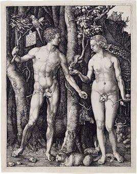 Adam And Eve, Religion, Albrecht Dürer