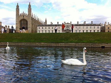 King'S College Cambridge Uk Swan Building