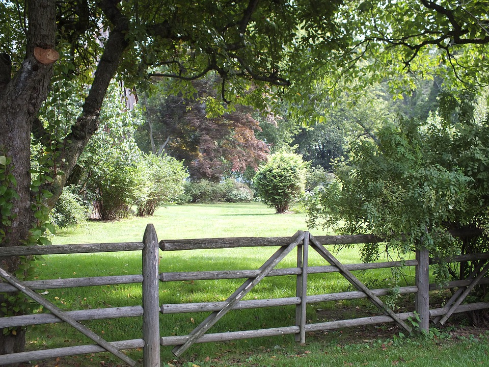 Сосет через забор на ферме фото 279-694