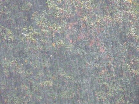 暴風雨, 土砂降り, 悪寒, 雨, ウェット, 水, 雨滴, 悪い水, トリスト