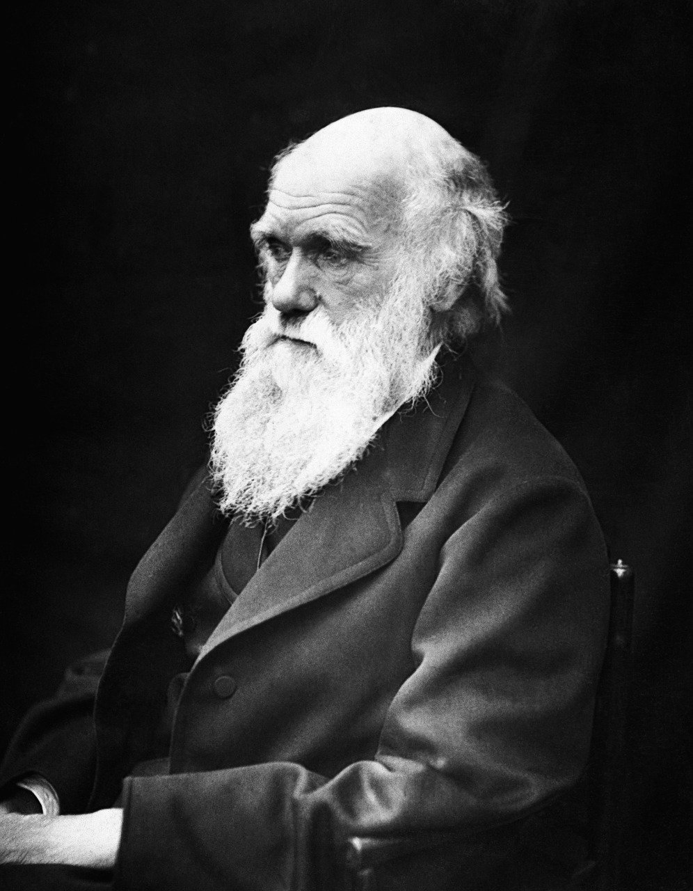 the life of charles robert darwin and his theories on the origin of life Darwin, charles robert of his life carefully and methodically working over the support for it in the superbly organized on the origin of.