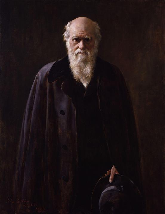 Charles Robert Darwin, Darwinisme