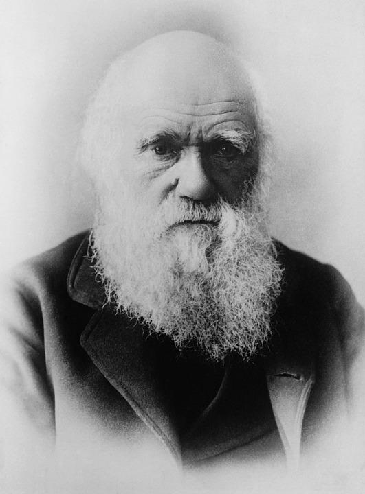 Charles Darwin, Scientifiques, Théorie De L'Évolution
