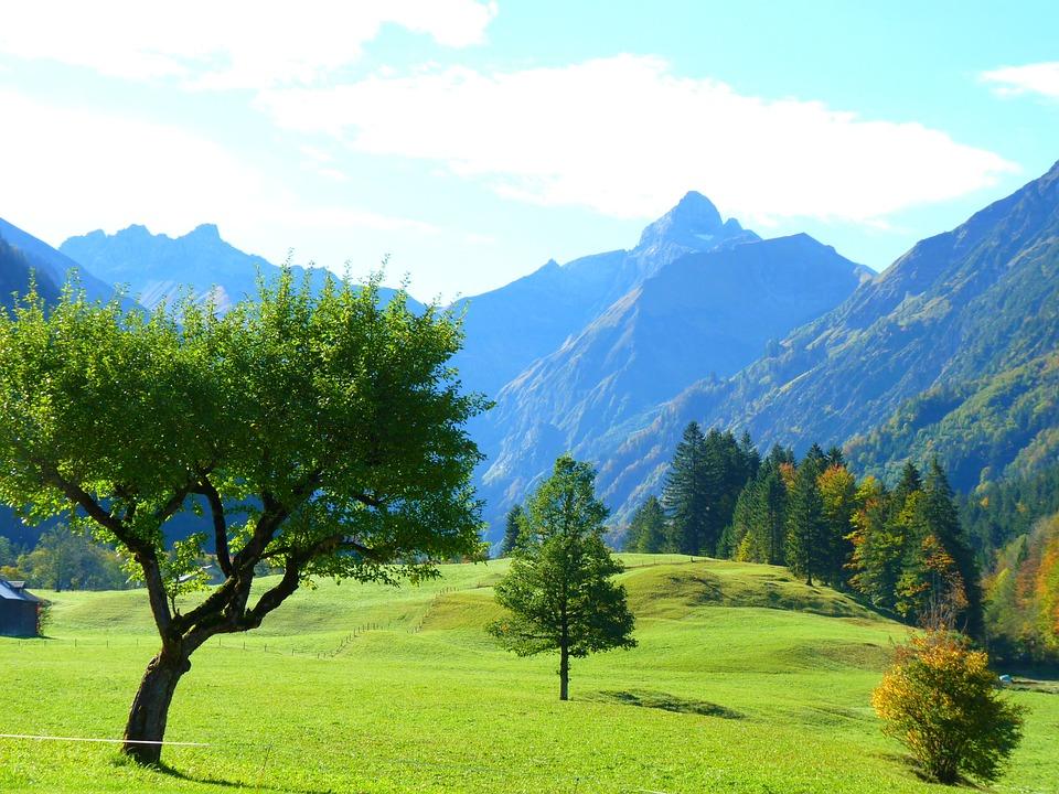 Pemandangan Pegunungan Pohon Foto Gratis Di Pixabay