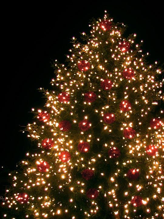 christmas fir tree lichterkette free photo on pixabay. Black Bedroom Furniture Sets. Home Design Ideas