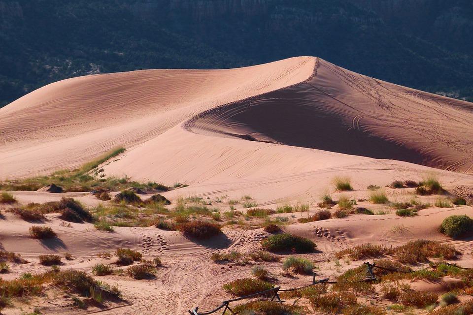 砂漠と砂丘