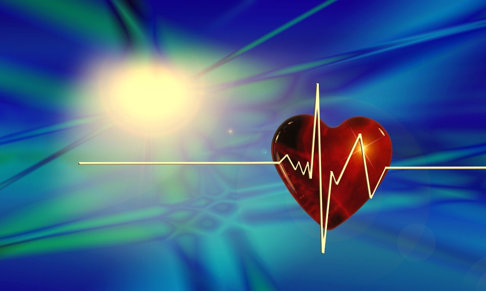 Heart, Curve, Health, Pulse, Frequency, Heartbeat