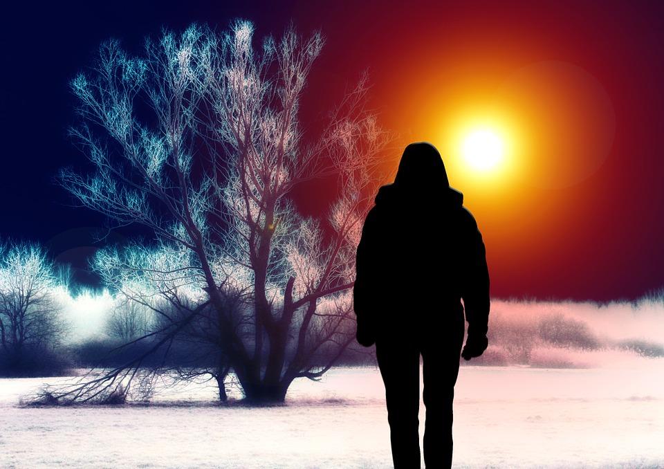 Silhouette, Donna, Albero, Paesaggio, Surreale, Neve