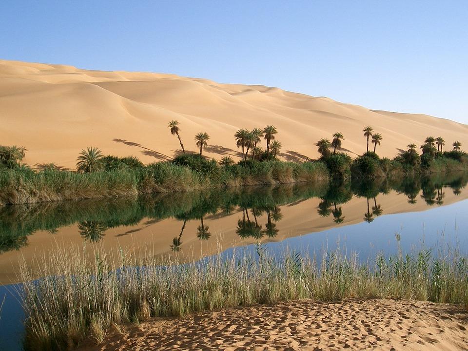 Oasis, Libia, Desierto, Palmeras, Dunas, Arena