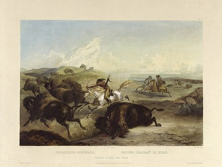 Indians, Hunts, Buffalo, Bison