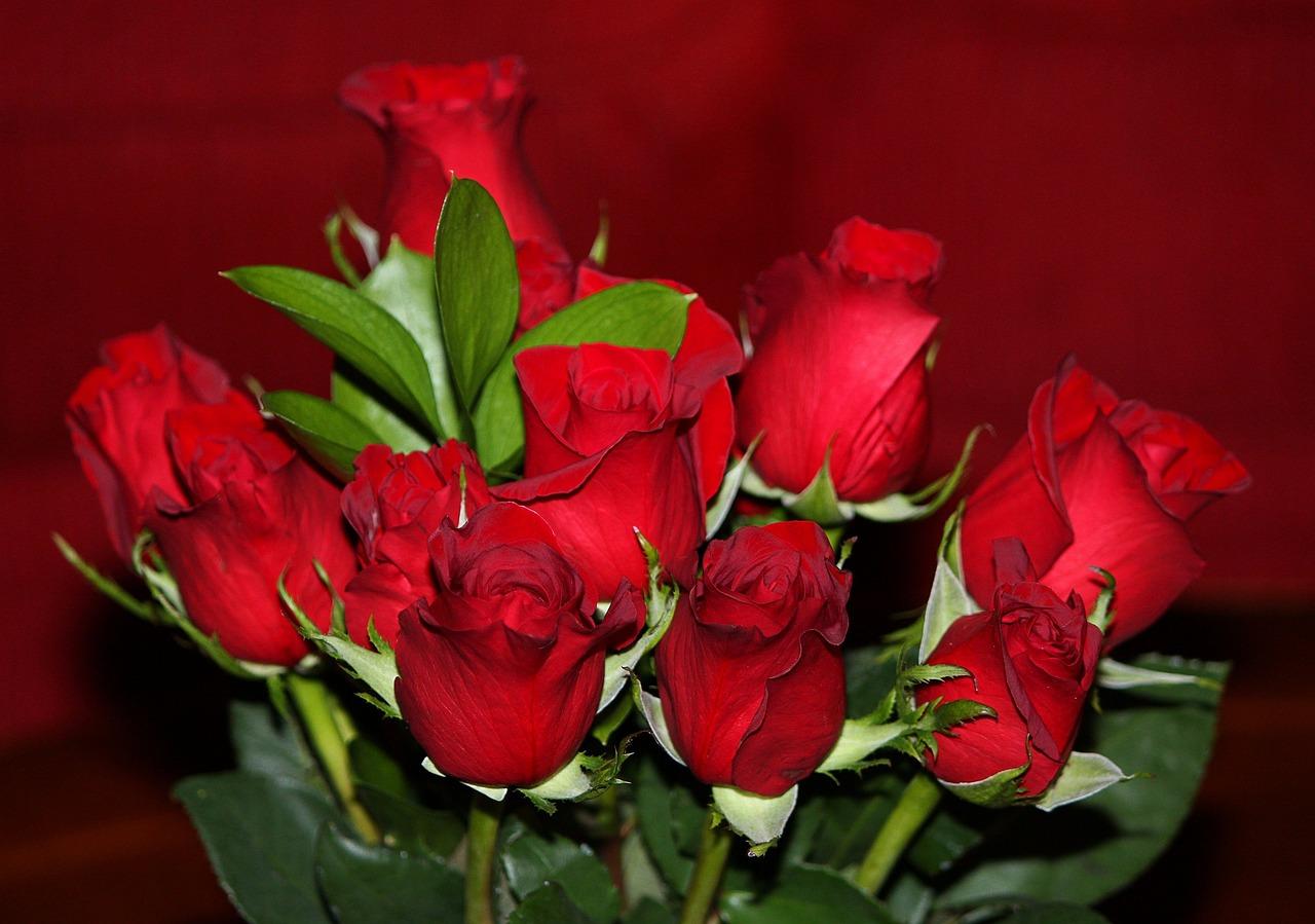 Петушок золотой, открытка с днем рождения маме розы