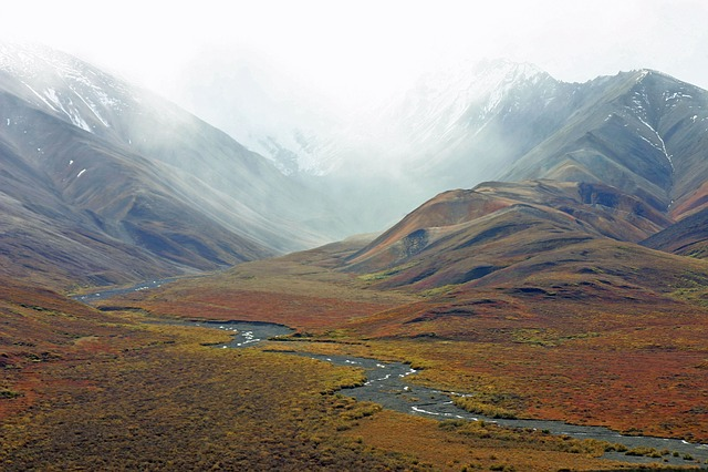 free photo  alaska  mountains  tundra  stream