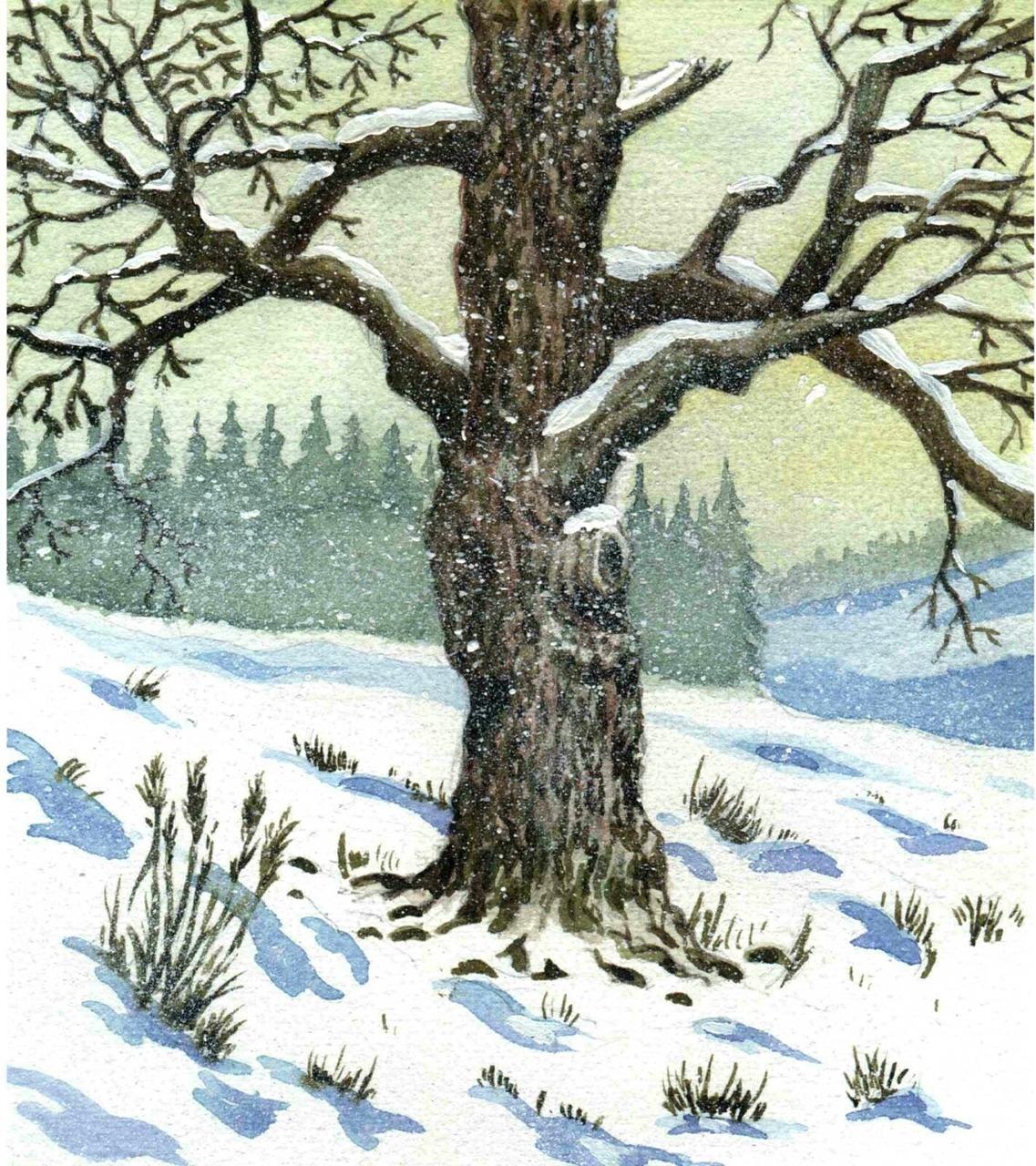 Картинка дерева зимой для детей