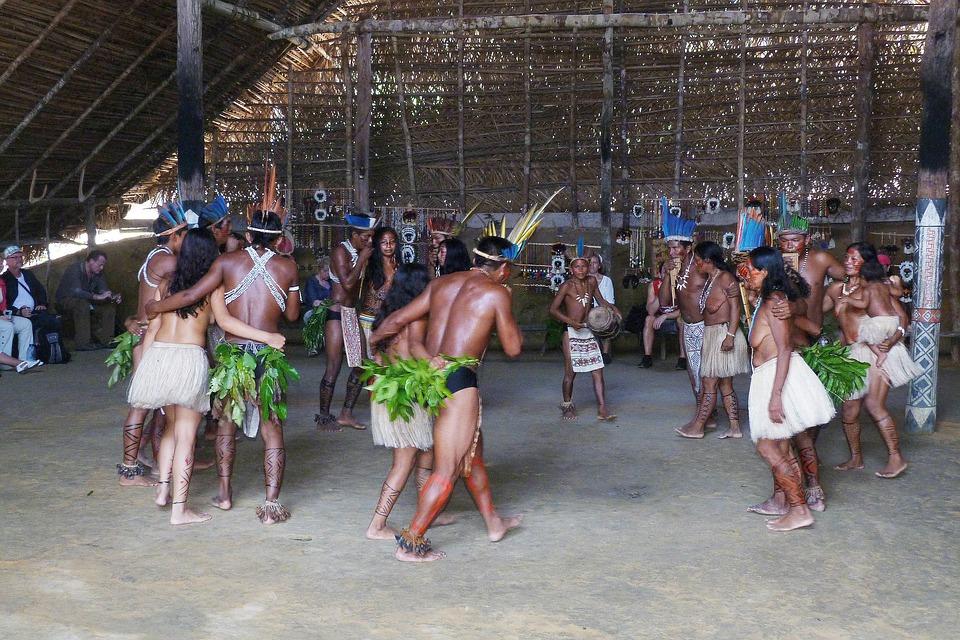 Brazil, Rainforest, Amazon, Rio Negro-facts-stats