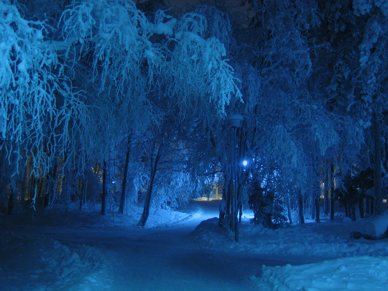 snow and cold winter nights Explore zoey ann's board on a cold winter's night on pinterest | see more ideas about winter night, paisajes and winter snow discover recipes, home ideas, style inspiration and other ideas to try.