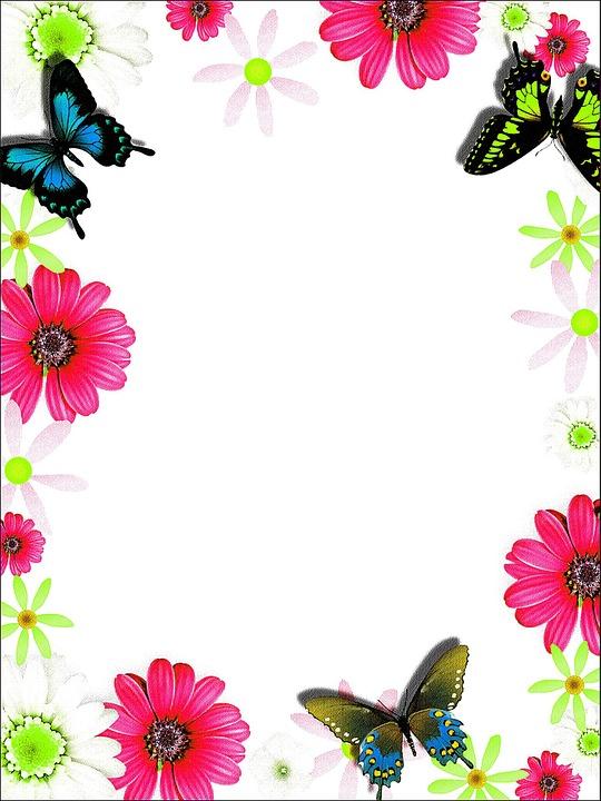 Warna Warni Bingkai Kartu Ucapan Gambar Gratis Di Pixabay
