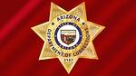 badge, law, enforcement