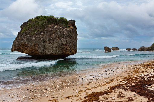 Barbados Bathsheba Caribbean Coast Nature