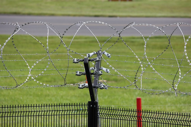 Electric Fence Wire Barbed 183 Free Photo On Pixabay