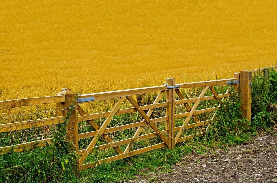 Landwirtschaft Ernte Zaun Kostenloses Foto Auf Pixabay
